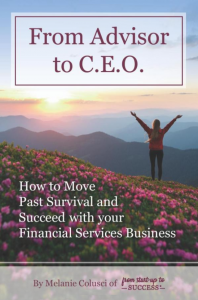 from-advisor-to-ceo